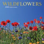 Wildflowers 2018 Square Wall Calendar Front Cover - Plato Calendars All Rights Reserved