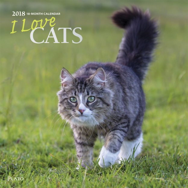 I Love Cats 2018 Square Wall Calendar Front Cover - Plato Calendars All Rights Reserved