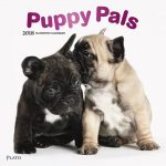 Puppy Pals 2018 Square Wall Calendar Front Cover - Plato Calendars All Rights Reserved