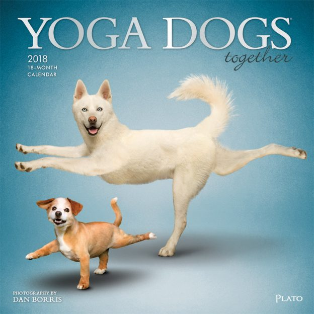 Yoga Dogs 2018 Square Wall Calendar Front Cover - Plato Calendars All Rights Reserved