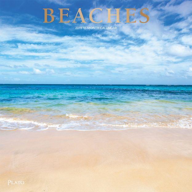 Beaches 2019 12 x 12 Inch Monthly Square Wall Calendar with Foil Stamped Cover by Plato, Travel Nature Tropical