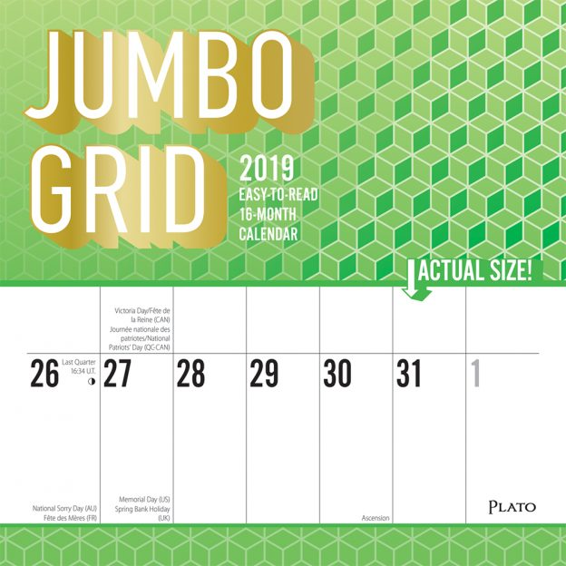 Jumbo Grid Large Print 2019 12 x 12 Inch Monthly Square Wall Calendar with Foil Stamped Cover by Plato, Easy to See with Large Font