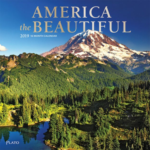 America the Beautiful 2019 12 x 12 Inch Monthly Square Wall Calendar with Foil Stamped Cover by Plato, USA United States Scenic Nature