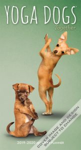 Yoga Dogs Together 2019 3.5 x 6.5 Inch Two Year Monthly Pocket Planner by Plato, Animals Humor Dog