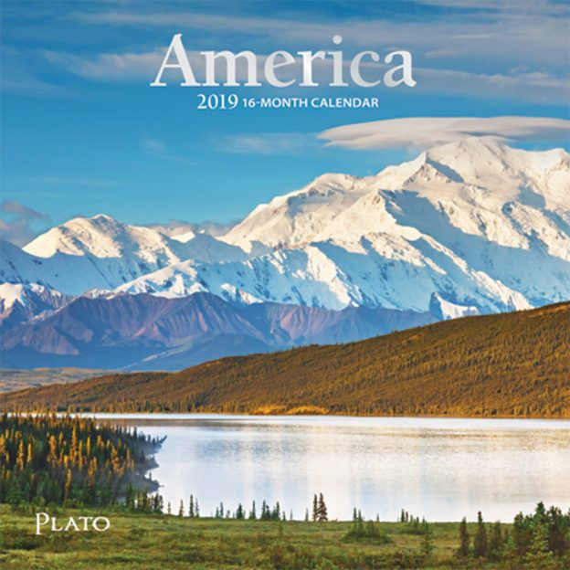 America 2019 7 x 7 Inch Monthly Mini Wall Calendar with Foil Stamped Cover by Plato, USA United States
