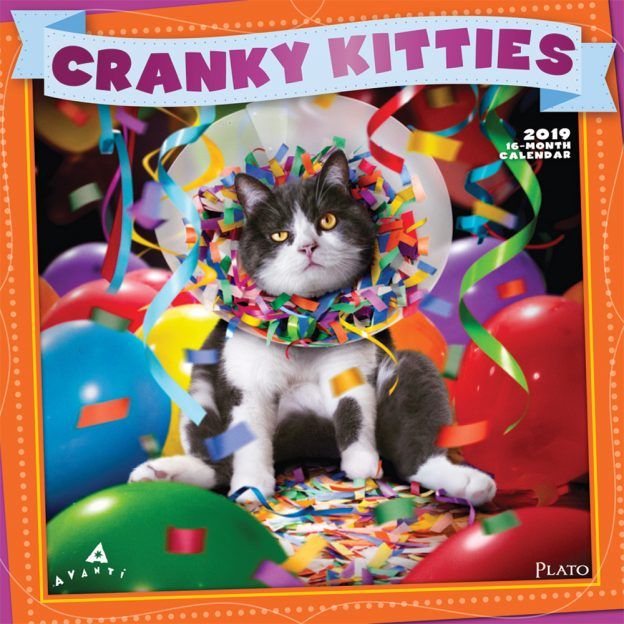 Avanti Cranky Kitties 2019 12 x 12 Inch Monthly Square Wall Calendar with Foil Stamped Cover by Plato, Angry Cat Humor