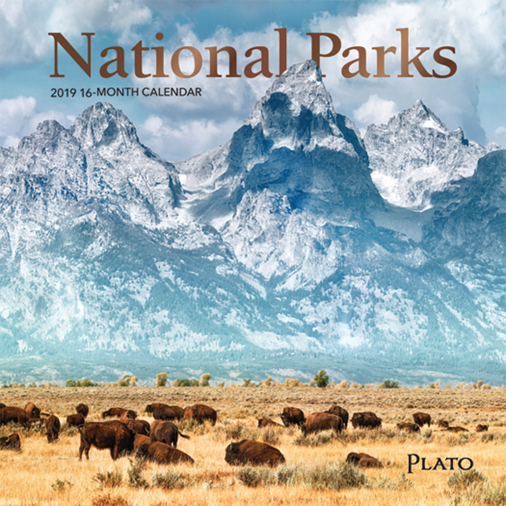 National Parks 2019 7 x 7 Inch Monthly Mini Wall Calendar with Foil Stamped Cover by Plato, USA United States of America Scenic Nature