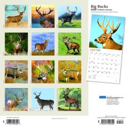 Big Bucks 2020 12 x 12 Inch Monthly Square Wall Calendar with Foil Stamped Cover by Plato, Wildlife Animals Forest Hunting
