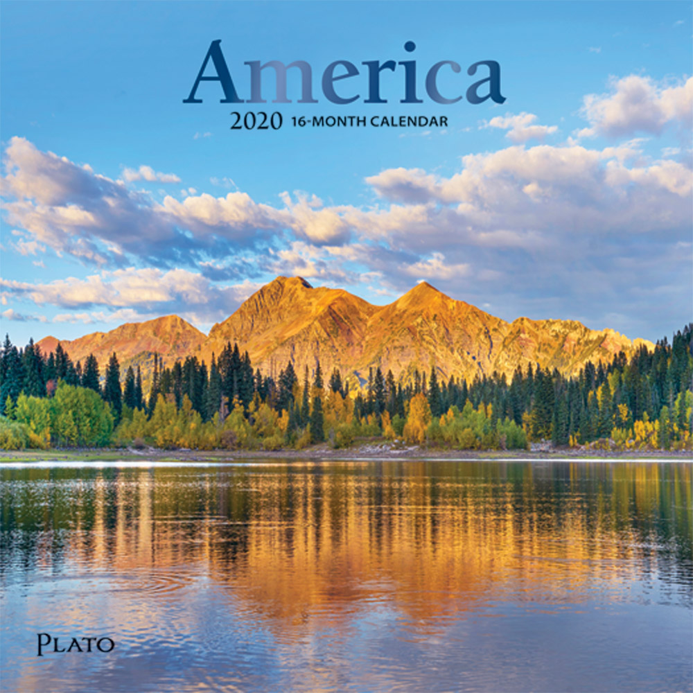 America 2020 7 x 7 Inch Monthly Mini Wall Calendar with Foil Stamped Cover by Plato, USA United States