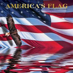 America's Flag 2020 12 x 12 Inch Monthly Square Wall Calendar with Foil Stamped Cover by Plato, USA United States of America