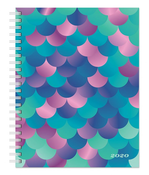 Ariel Collection 2020 6 x 7.75 Inch Weekly Desk Planner by Plato, Planning Stationery