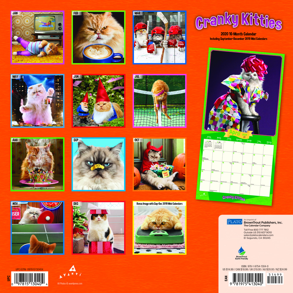 Avanti Cranky Kitties 2020 12 x 12 Inch Monthly Square Wall Calendar with Foil Stamped Cover by Plato, Angry Cat Humor