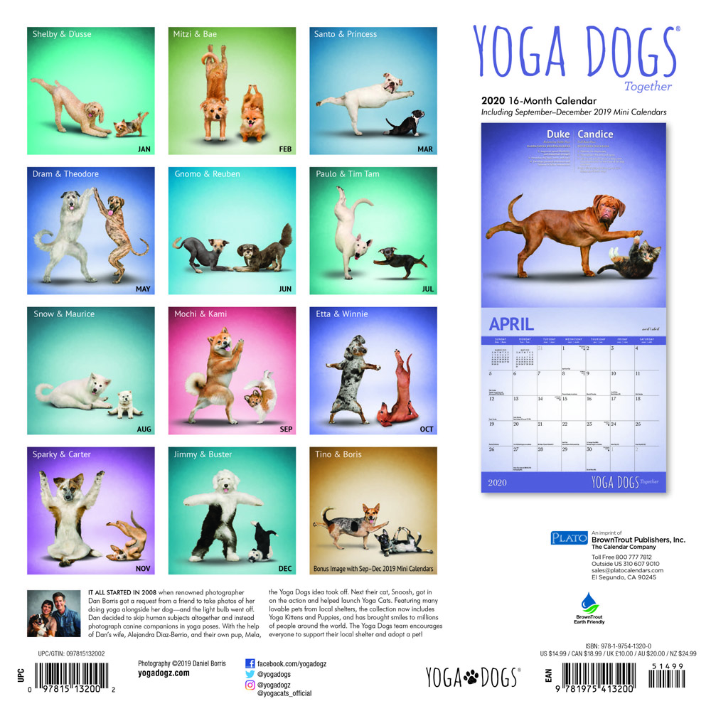 Yoga Dogs Together 2020 12 x 12 Inch Monthly Square Wall Calendar by Plato, Animals Humor Dog