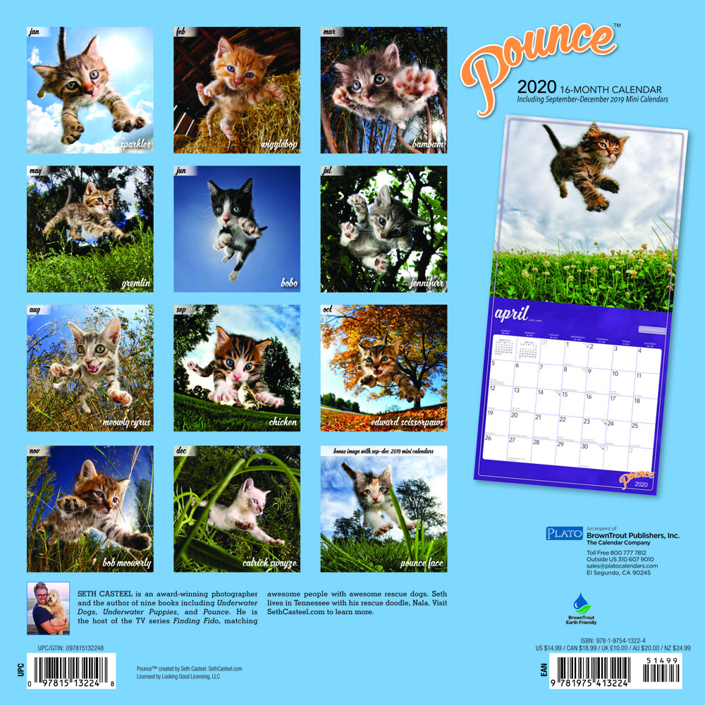 Pounce 2020 12 x 12 Inch Monthly Square Wall Calendar by Plato, Kitten Humor