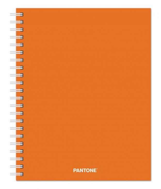 Pantone™ 2020 6 x 7.75 Inch Desk Planner from Plato™ Fresh Orange