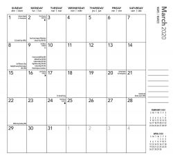 Ariel Collection 2020 3.5 x 6.5 Inch Two Year Monthly Pocket Planner Calendar by Plato, Planning Stationery