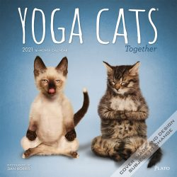 Yoga Cats Together 2021 12 x 12 Inch Monthly Square Wall Calendar by Plato, Animals Humor Cat