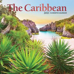 The Caribbean 2021 7 x 7 Inch Monthly Mini Wall Calendar with Foil Stamped Cover by Plato, Travel Nature Beach Tropical