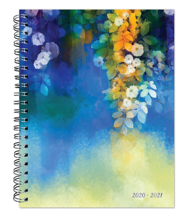 Maui Morning 2021 6 x 7.75 Inch Weekly 18 Months Desk Planner by Plato with Foil Stamped Cover, Planning Stationery
