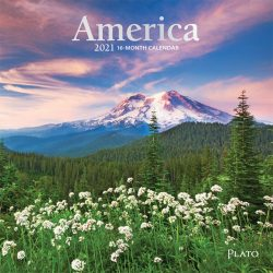 America 2021 7 x 7 Inch Monthly Mini Wall Calendar with Foil Stamped Cover by Plato, USA United States