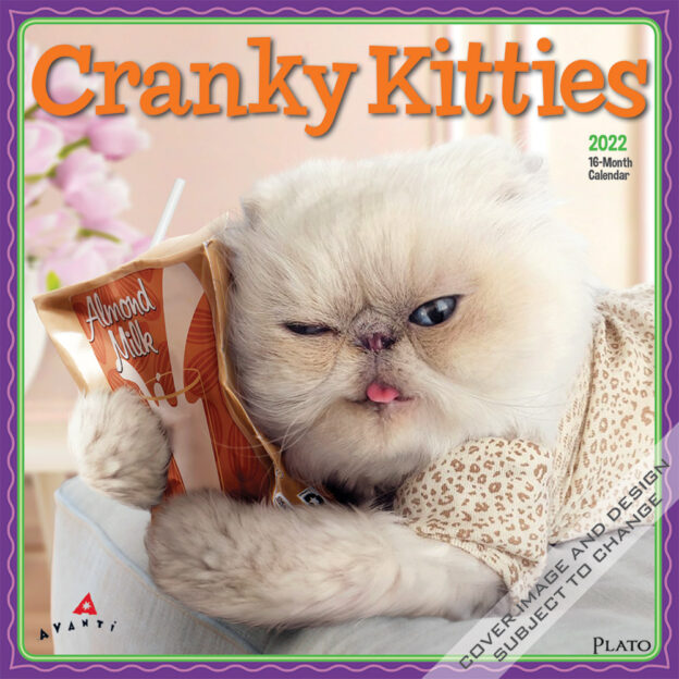 Avanti Cranky Kitties 2022 12 x 12 Inch Monthly Square Wall Calendar by Plato, Angry Cat Humor